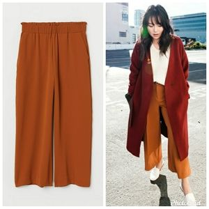 H&M Rust color High Waist Crop Pull On Pants
